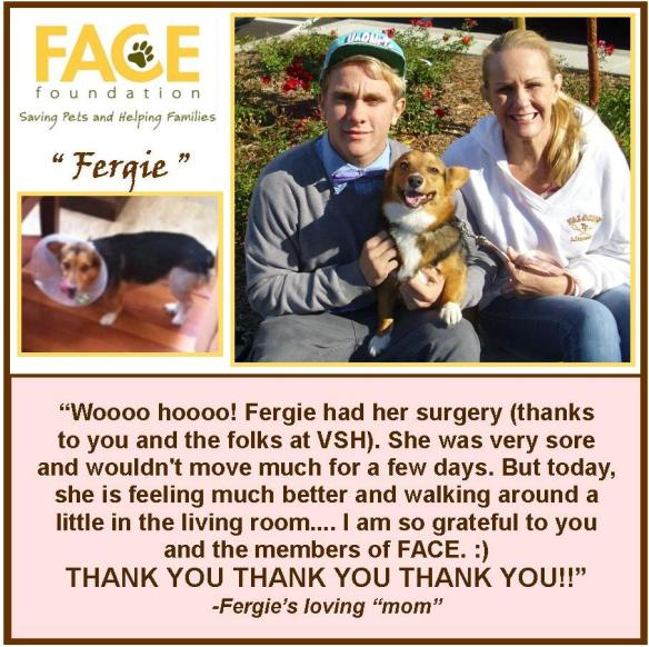 Meet Fergie!
