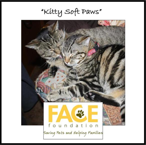 Meet Kitty Soft Paws!