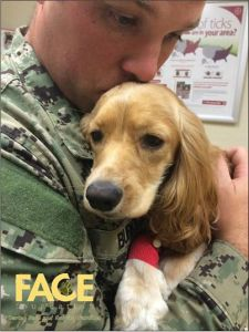 Military Pets