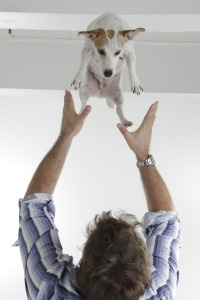 Dog and person