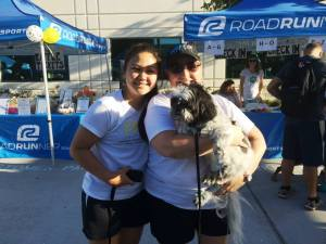2015 Doggie Dash5