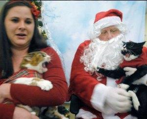 Pets with Santa2