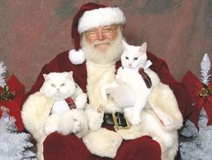 Pets with Santa7