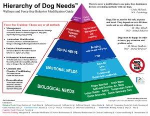 HierarchyofDogNeeds_WebEmailFB