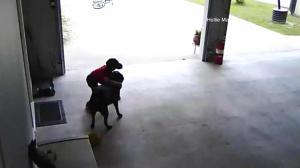 dog-hug1